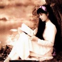Bìa đĩa nhạc Hoa sứ nhà nàng